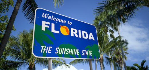 Florida Amendment 3